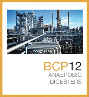 BCP12™