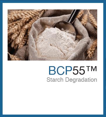 BCP55™