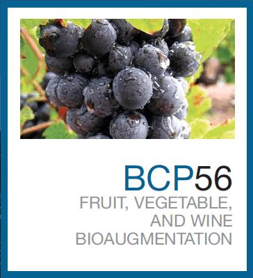 BCP56™