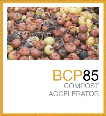 BCP85™
