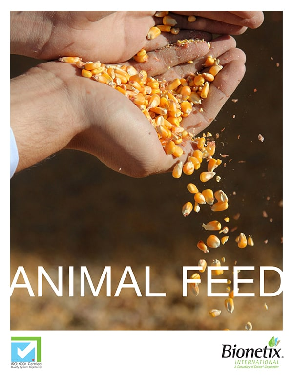 Animal Feed Brochure