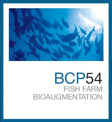 BCP54™